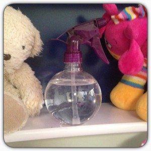 Spray bottle for ghosts